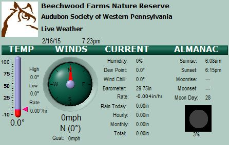 Current Conditions at Beechwood
